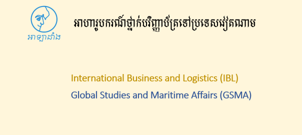 Vietnam scholarship